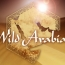 Wild Arabia - BBC Two