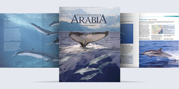 Whales-and-Dolphins-of-Arabia