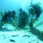cs-diving