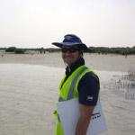 cs-mangrove